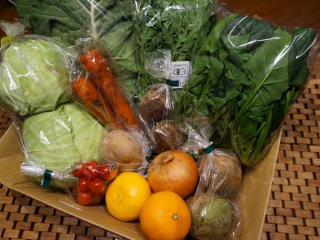 2月21日お届け野菜セットおすすめレシピ