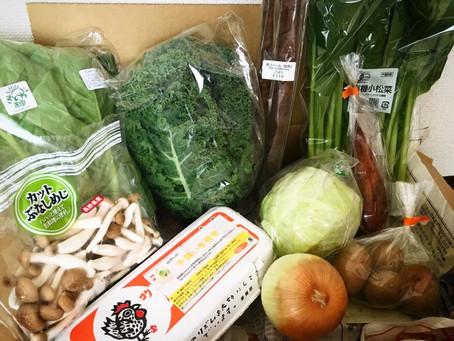 10月10日お届け野菜セットおすすめレシピ
