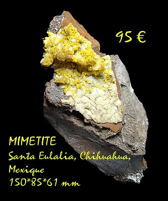 MimSEula.png
