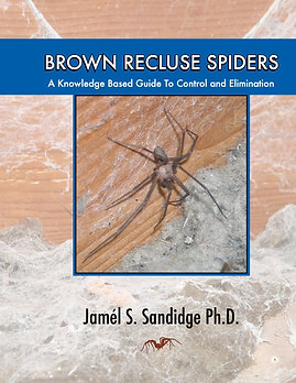 Guide to Brown Recluse Spiders