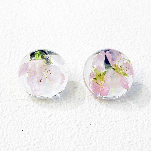 《flowers*sae》本物の桜を使用したピアス/イヤリング(中)