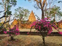 vue sur le Temple Khmer phanom Rung au travers les bougainvilliers
