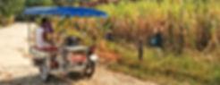 Balade dans les rizieres Terre du Siam voyage avec nos side-cars