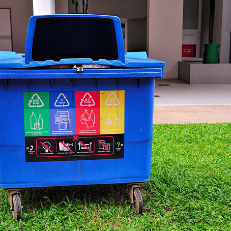 THE RECYCLING GUIDE