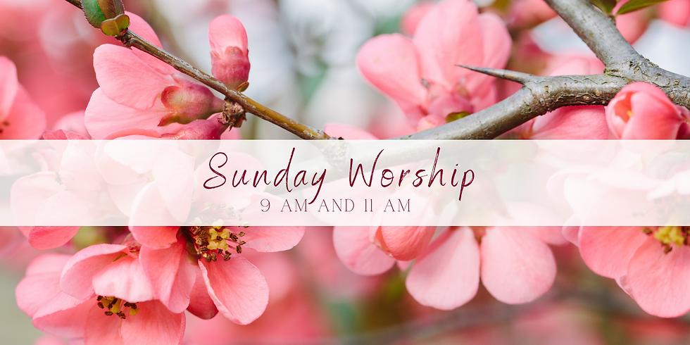Worship April 25th