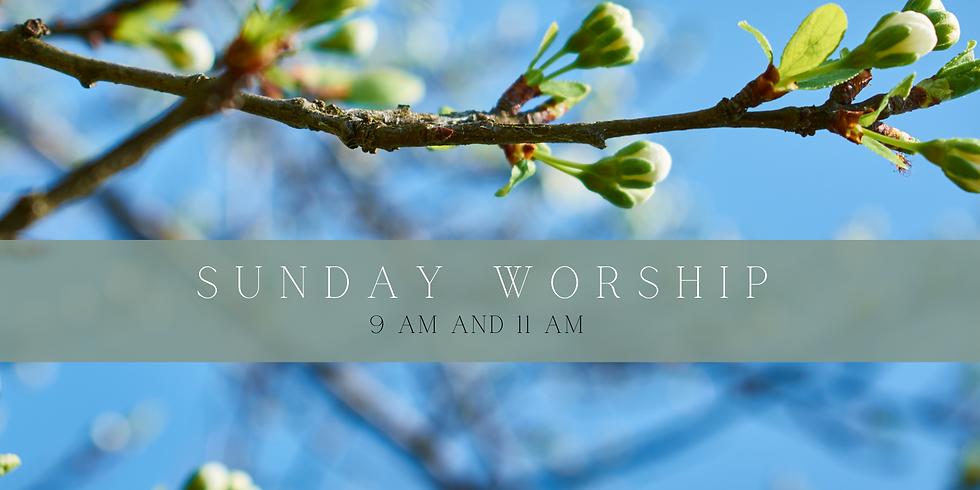 Worship May 2nd