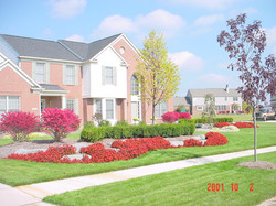 Frontal Veiw Bright Red Fall Colers.jpg