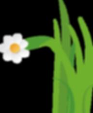 Gras mit Blume.png