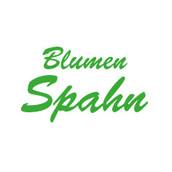 Logo-Stayhome-Spahn.jpg