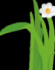 Gras mit Blume 2.png