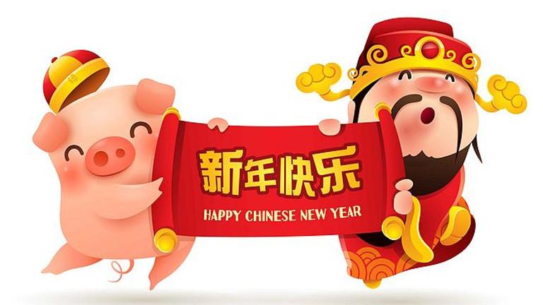 四川同乡总会2019猪年春晚