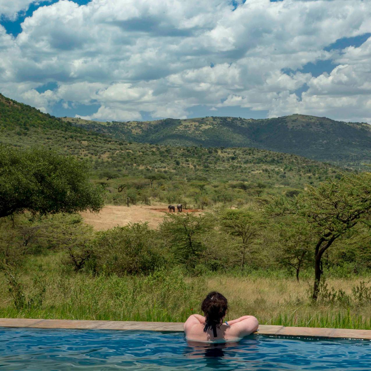Spirit of the Masai Mara - Infinity Pool 2