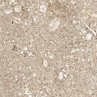 Ocean Stone - Tan