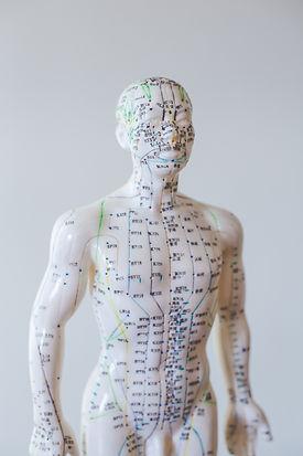 Sherwood Park Acupuncture