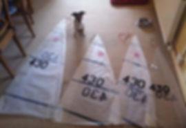 Rc Laser Sails Polly.jpg