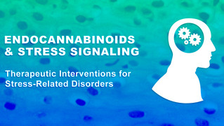 Endocannabinoids & Stress Signaling: Therapeutic Interventions for Stress-Related Disorders