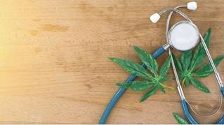 The Therapeutic Uses of Prescribed Marijuana