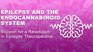 Epilepsy & the Endocannabinoid System