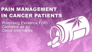 Pain Management in Cancer Patients