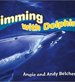 swimmingwithdolphins.jpg
