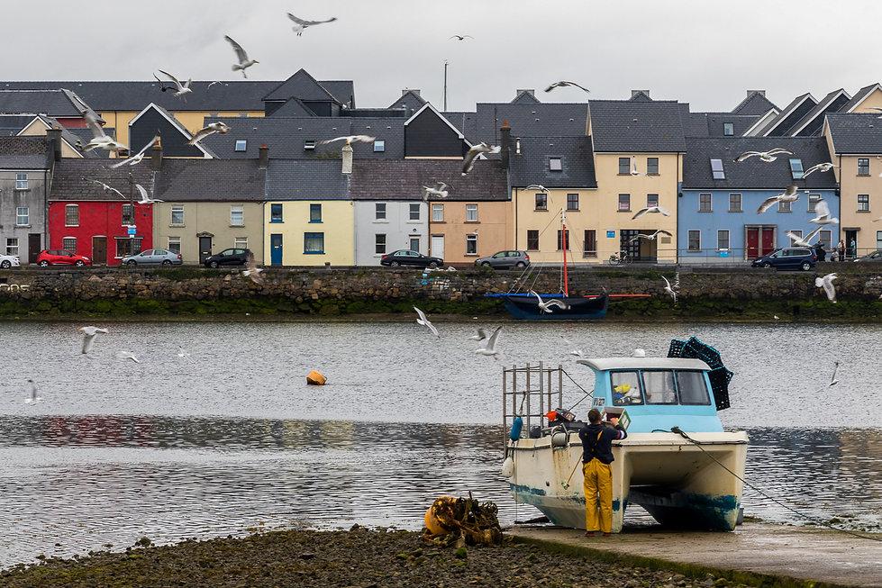 10. Galway.jpg