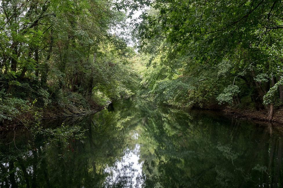 Tirage photographique - Sud-Ouest - Paysage - Riviere - reflets vegetation - vert - Maud Dupuy