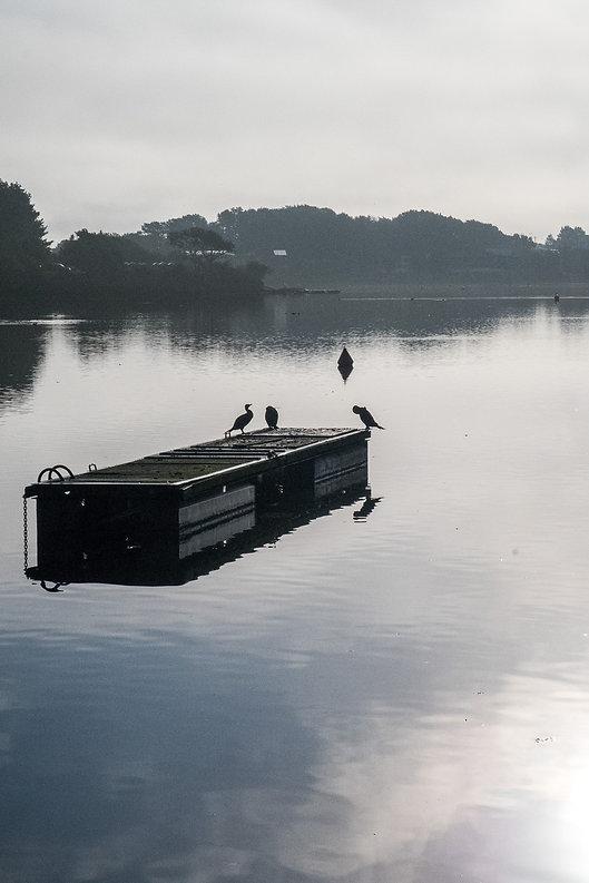 Tirage photographique - Bretagne - Paysage - Etang du Ter - Lorient - Maud Dupuy