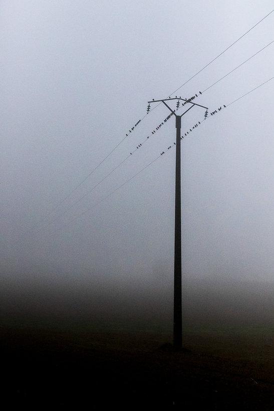 01. brouillard.jpg