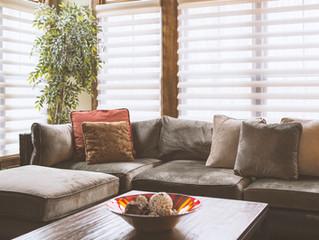 Sofa mit Fensterleder säubern