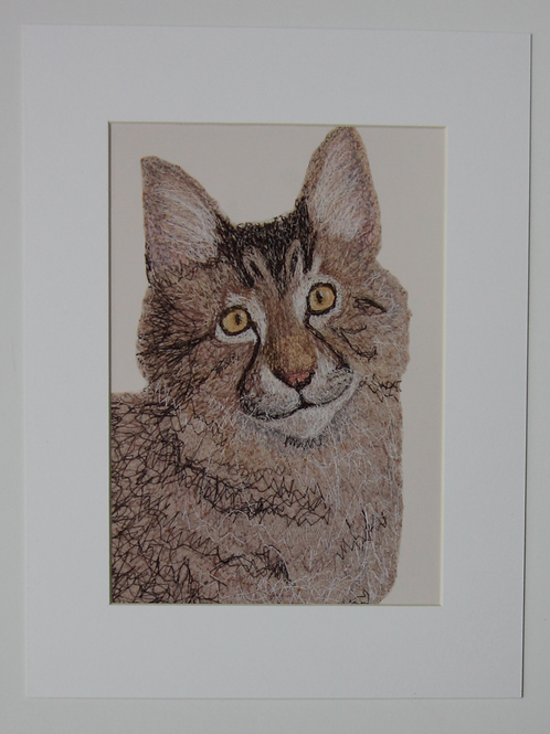 CAT UNFRAMED PRINT