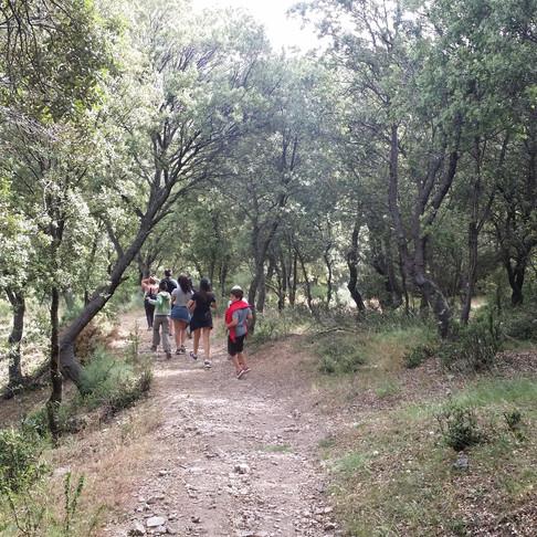 Campamento de Verano Sierra Nevada Adventure 2019