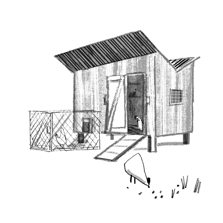 Hen House | Sarah Wildfang