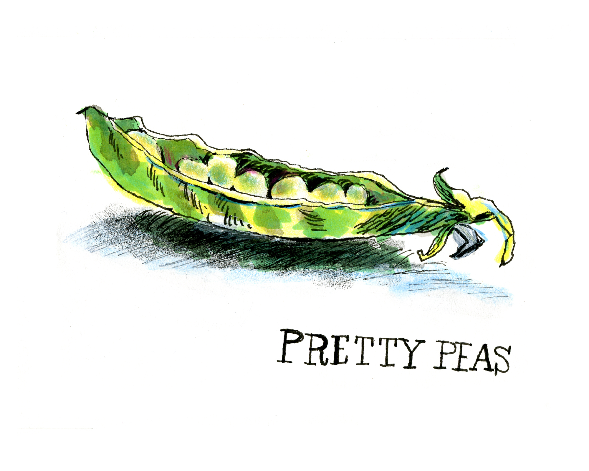 Pretty Peas | Sarah Wildfang
