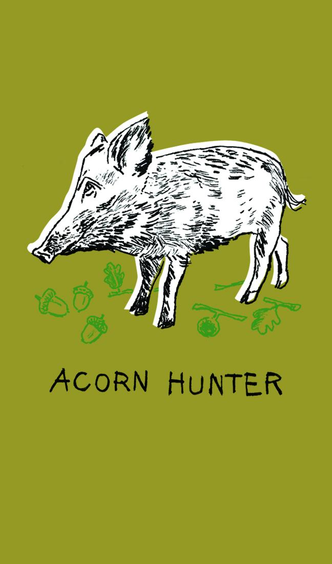Acorn Hunter | Sarah Wildfang