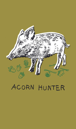 Acorn Hunter | Sarah Wildfang