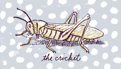 The Cricket | Sarah Wildfang