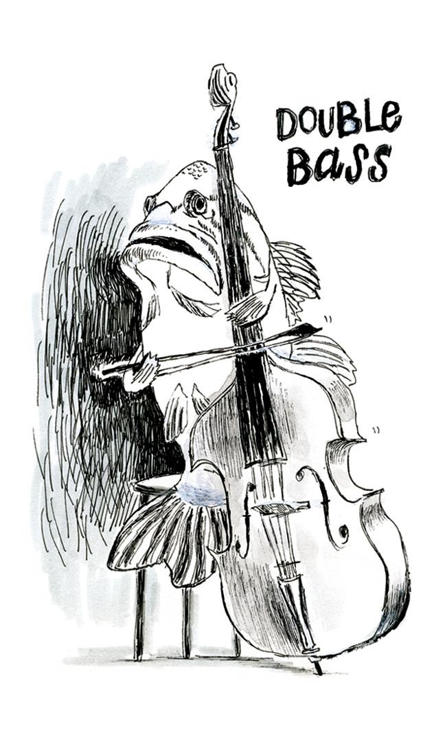 Double Bass | Sarah Wildfang