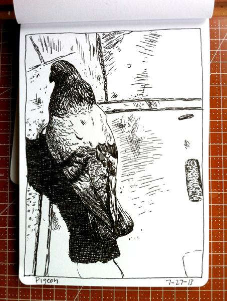 West Coast Pigeon | Sarah Wildfang