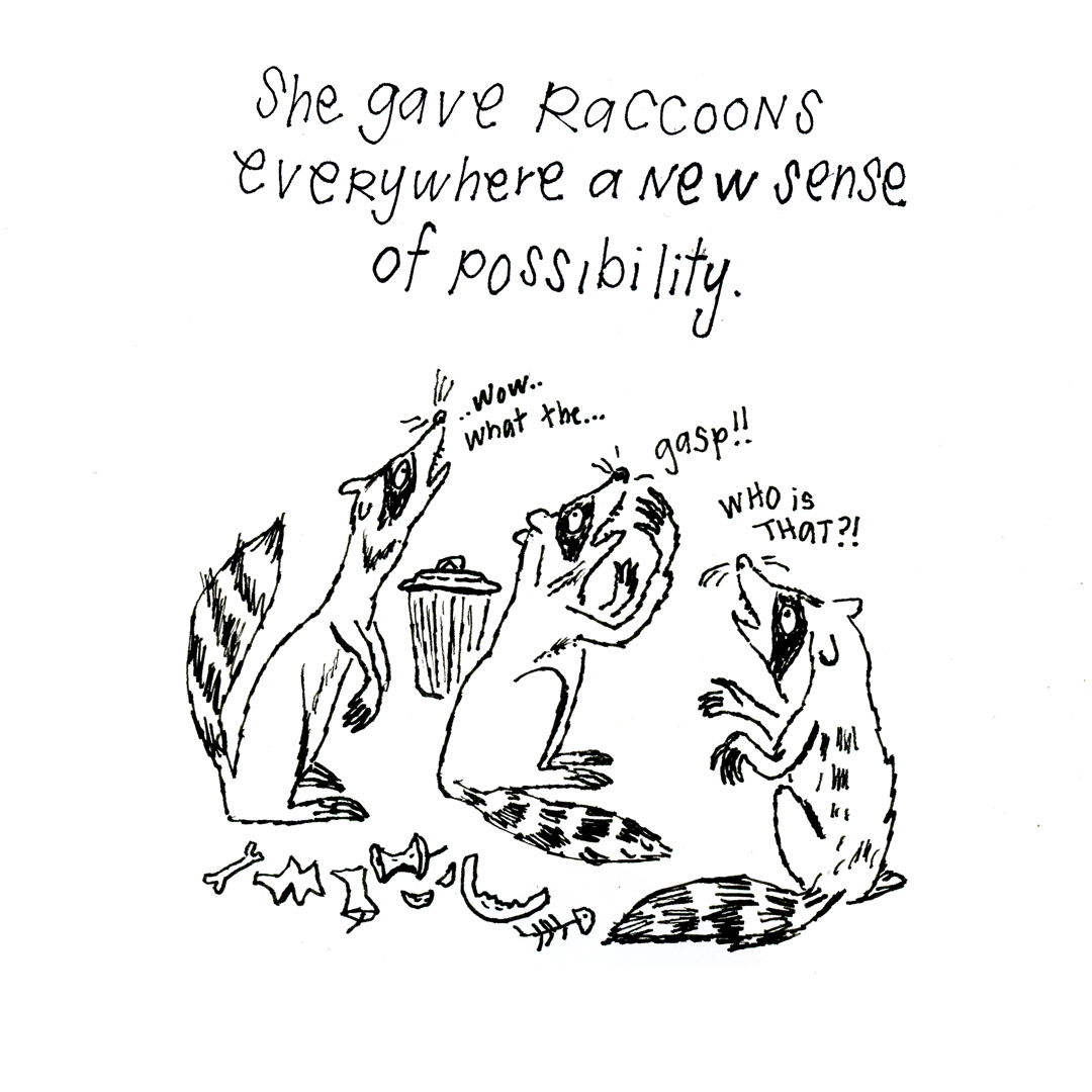 Super Raccoon | Sarah Wildfang