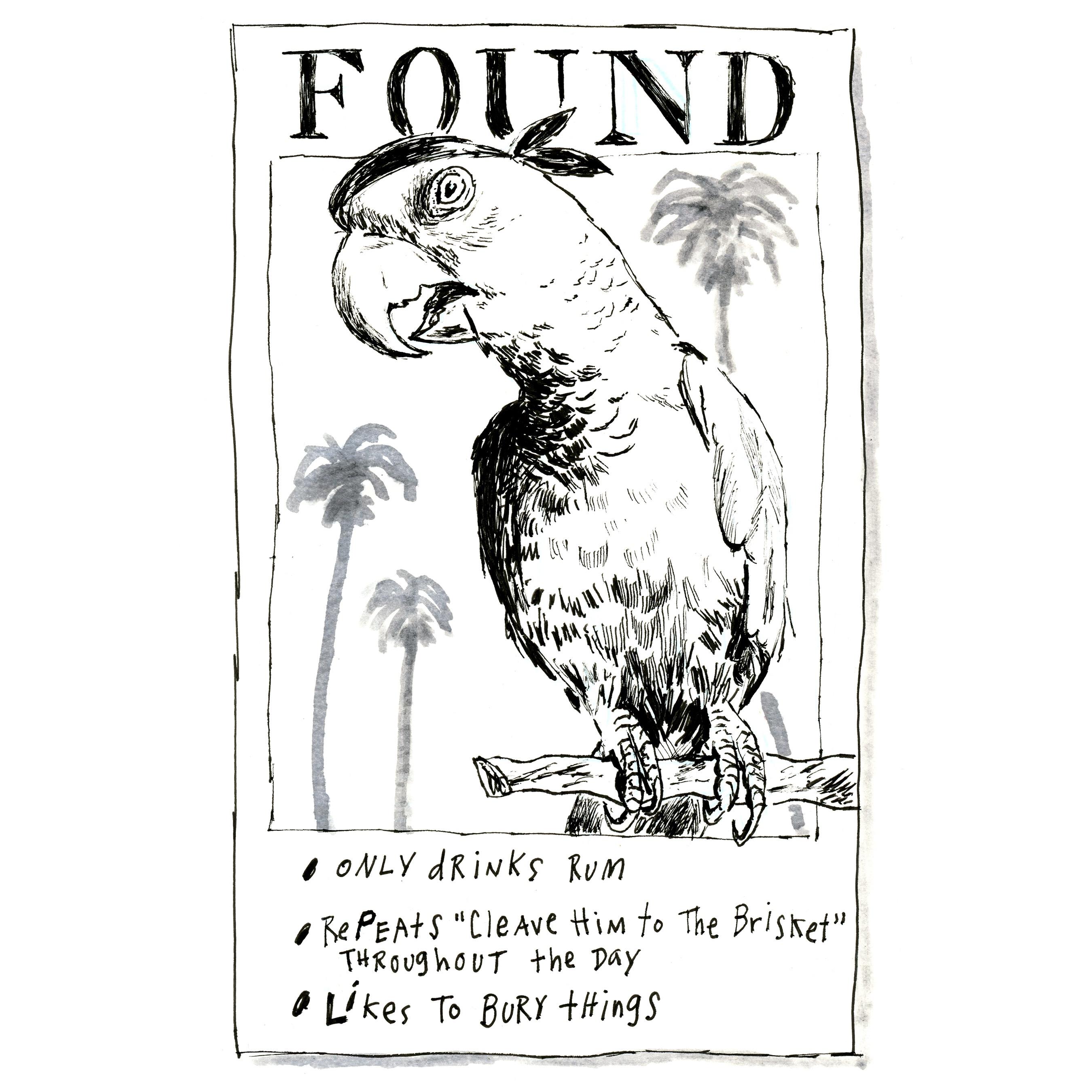 Found Parrot | Sarah Wildfang