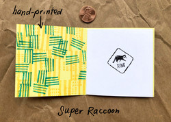 Super Raccoon inside front cover