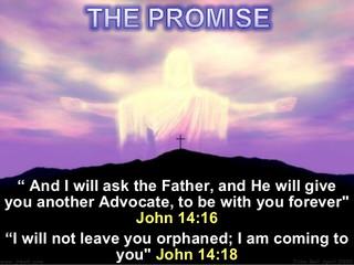 Orphan, no more