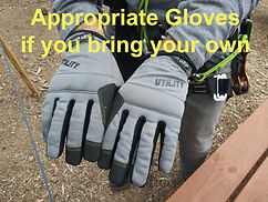 Appropriate gloves top1.jpg
