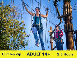Adult High Ropes Course