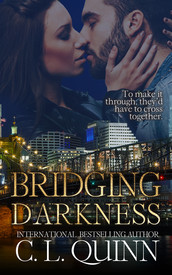 Bridging Darkness eBook.jpg