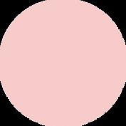 Asset 1_3x.png