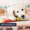 ThinkDogStore_Kit_Cuccioli.png