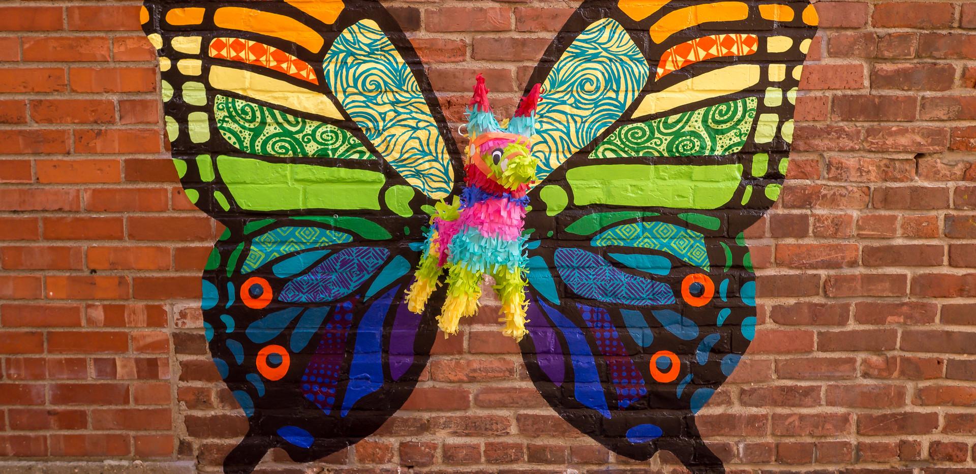 Ponies - Butterfly.jpg