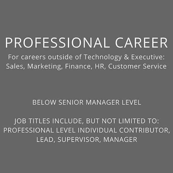 PROFESSIONAL - Below Sr. Manager