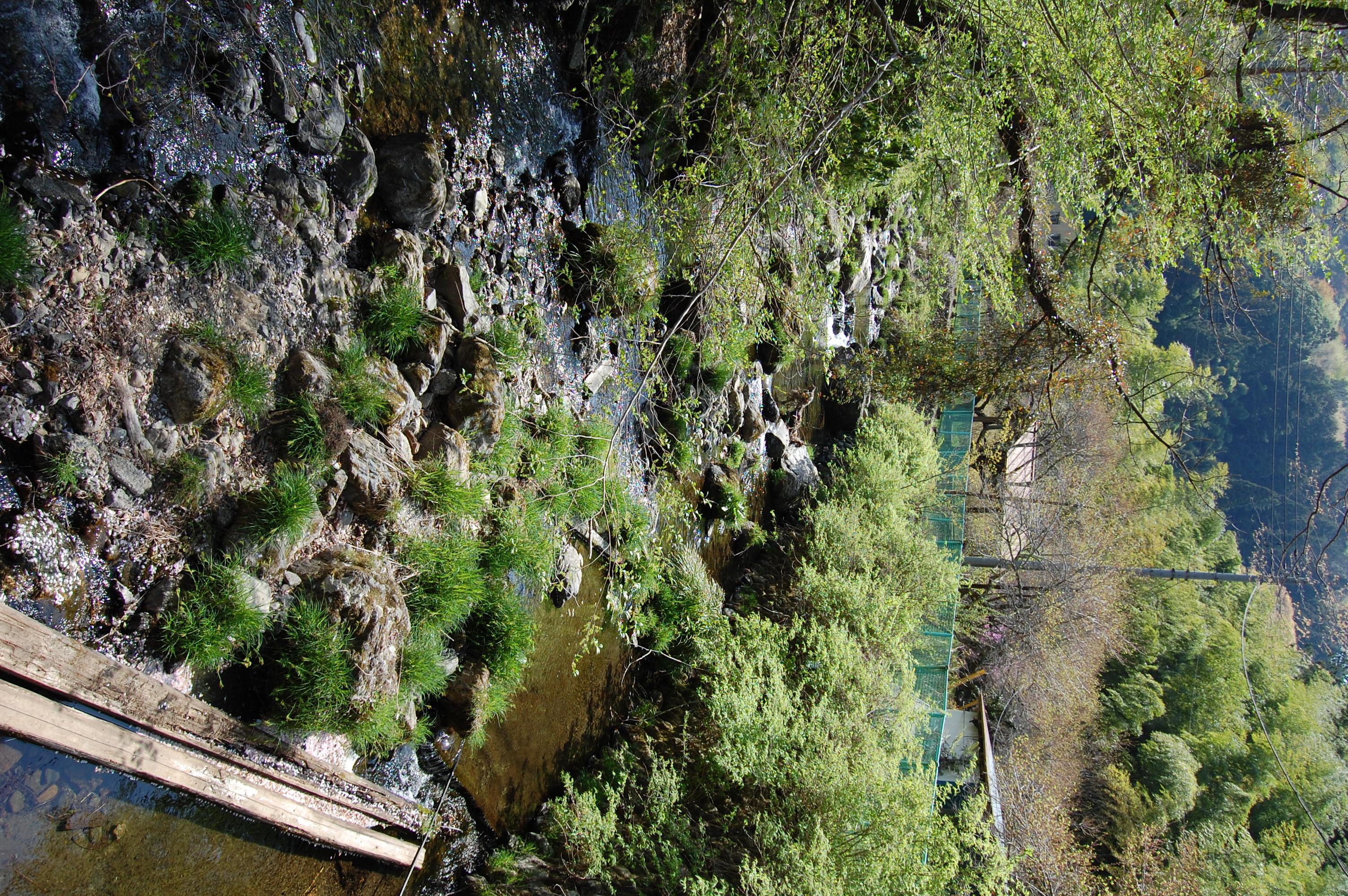 隣接する川